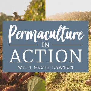 Permaculture In Action Course With geoff lawton at Zaytuna farm in April 2021