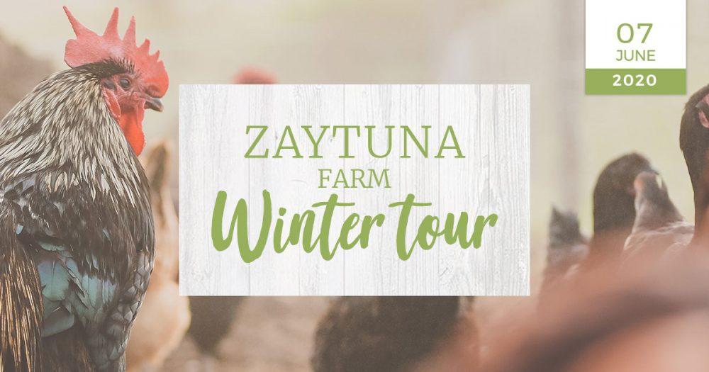 zaytuna-farm-winter-farm-tour-nzf
