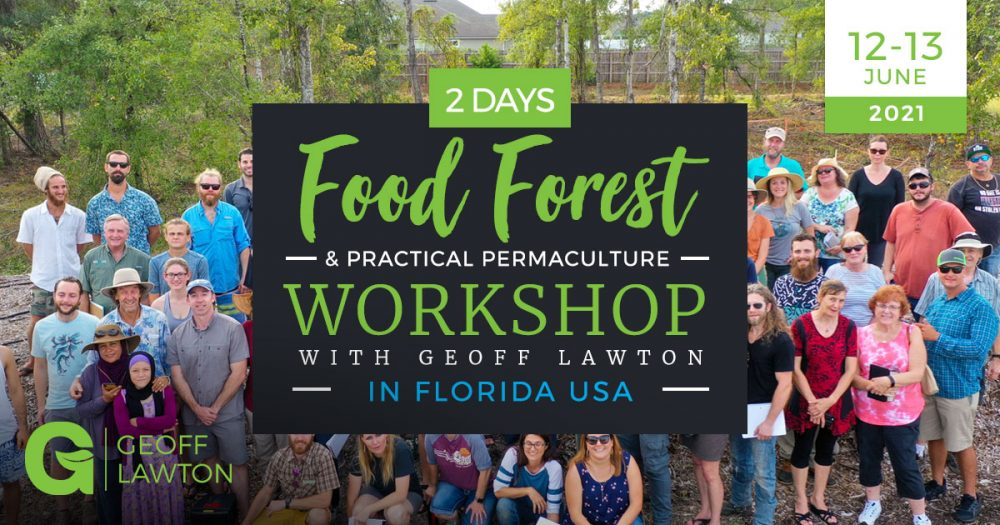 permaculture food forest workshop in Florida with geoff lawton 2021