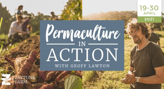 PIA-1200x630-permaculture-in-action-course-with-geoff-lawton-april-2021