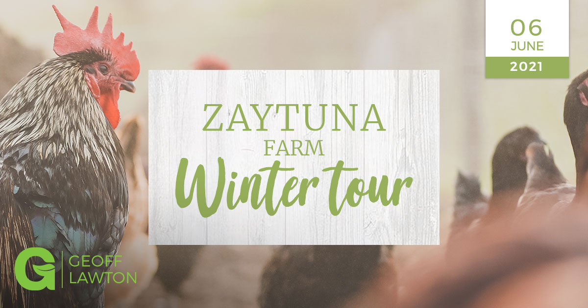 zaytuna farm winter tour