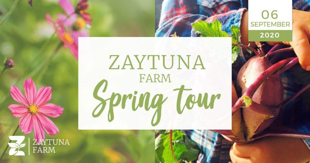 Zaytuna farm spring tour