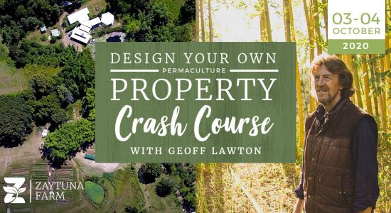 design-your-own-property-crash-course-with-geoff-lawton