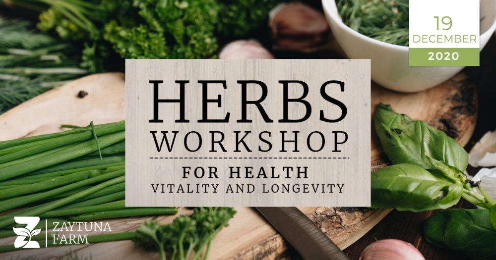 Herbs Workshop for Health Vitality and Longevity